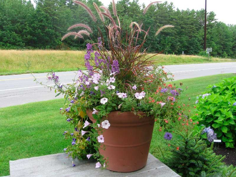 Image of: Garden Container Idea 10 Spectacular Container Cozy, Relaxed and Chic Bedding Sets