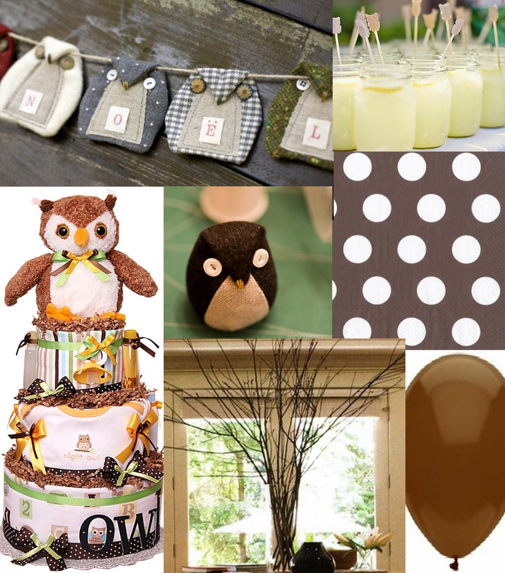 Image of: Baby Shower Food Ideas Baby Girl Shower Idea Owl Theme Owl Baby Bedding Ideas