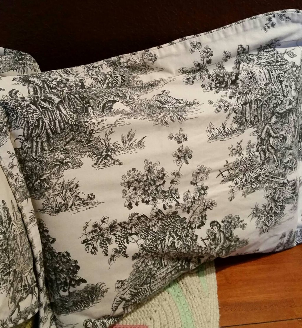 Image of: Vintage Waverly French Toile Set 2 Pillow Sham Shabby Chic Romantic Interior French Country Bedding Sets