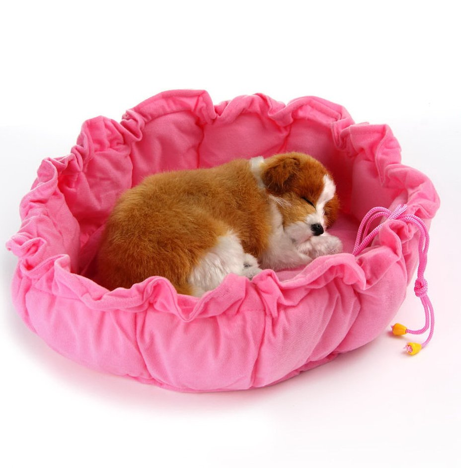 Image of: Cute Small Dog Bed Home Design Idea Wonderful Ideas Toddler Bed Sets Boy